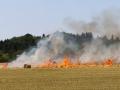 Flächenbrand Ottweiler (Foto Kai Hegi) (1)