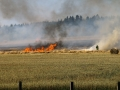 Flächenbrand Ottweiler (Foto Kai Hegi) (2)