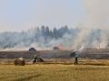 Flächenbrand Ottweiler (Foto Kai Hegi) (6)