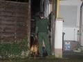 Hundeführer umstellen ein Haus