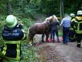 Pferderettung  (2)