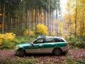 Waldarbeiter-Unfall-Dudw-1464