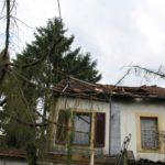 Dacheinsturz-durch-Baum-Saarlouis-Lisdorf