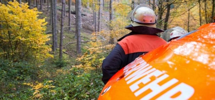 Waldarbeiter-Unfall-Dudw-1468